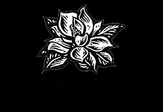 """""""Magnolia"""
